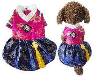 Disfraz Hanbok perro