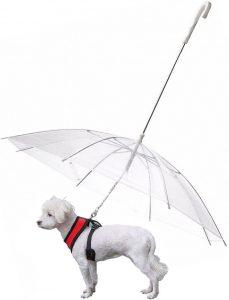 Paraguas correa perro pequeno