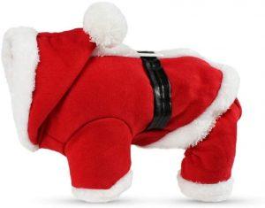 Disfraz Navidad perro
