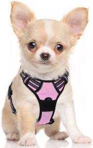 Arnes antitirones perro pequeno