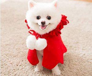 Capa Navidad perro