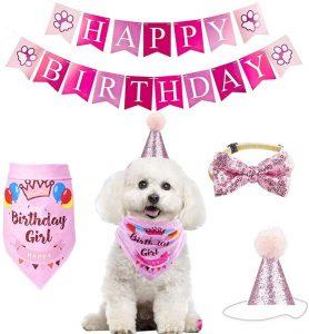 Accesorios fiesta rosa para perro