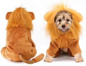 Disfraz león perro