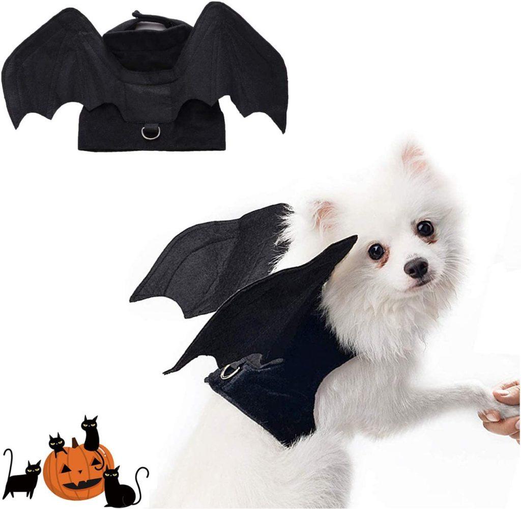 Disfraz murcielago perro
